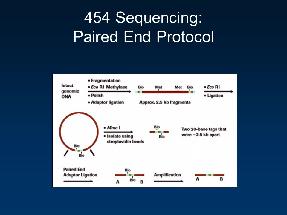 454 Sequencing: Paired End Protocol
