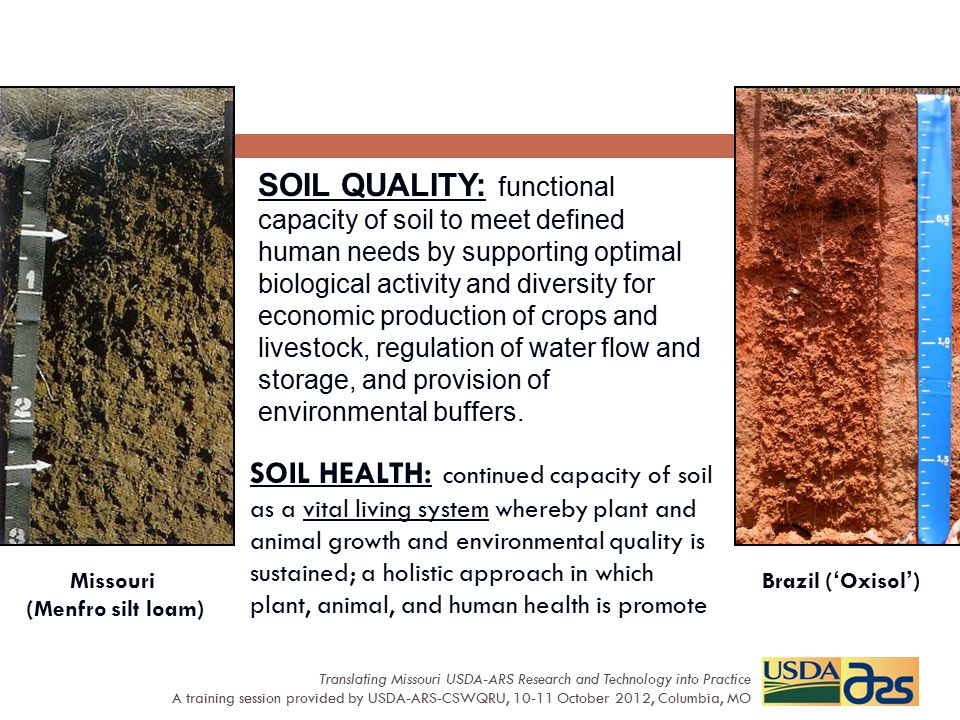SOIL QUALITY: functional capacity of soil to meet defined human needs by supporting optimal biological activity and diversity for economic production of crops and livestock, regulation of water flow and storage, and provision of environmental buffers.