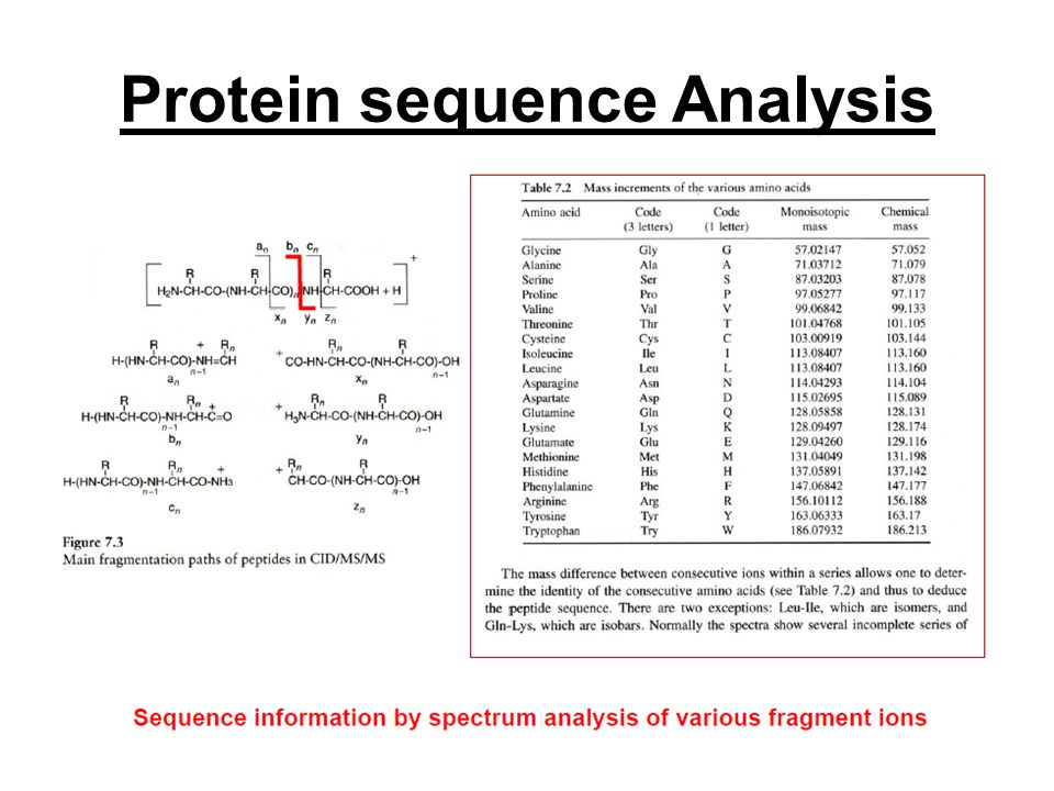Protein sequence Analysis