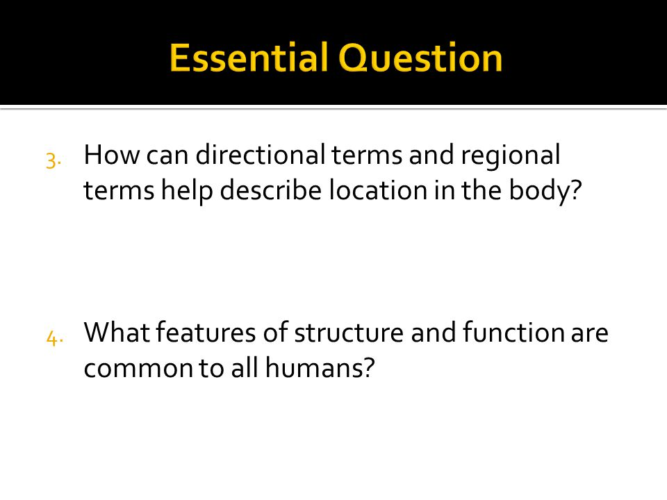 Essential Question How can directional terms and regional terms help describe location in the body