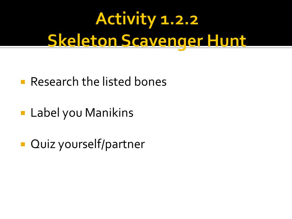 Activity 1.2.2 Skeleton Scavenger Hunt