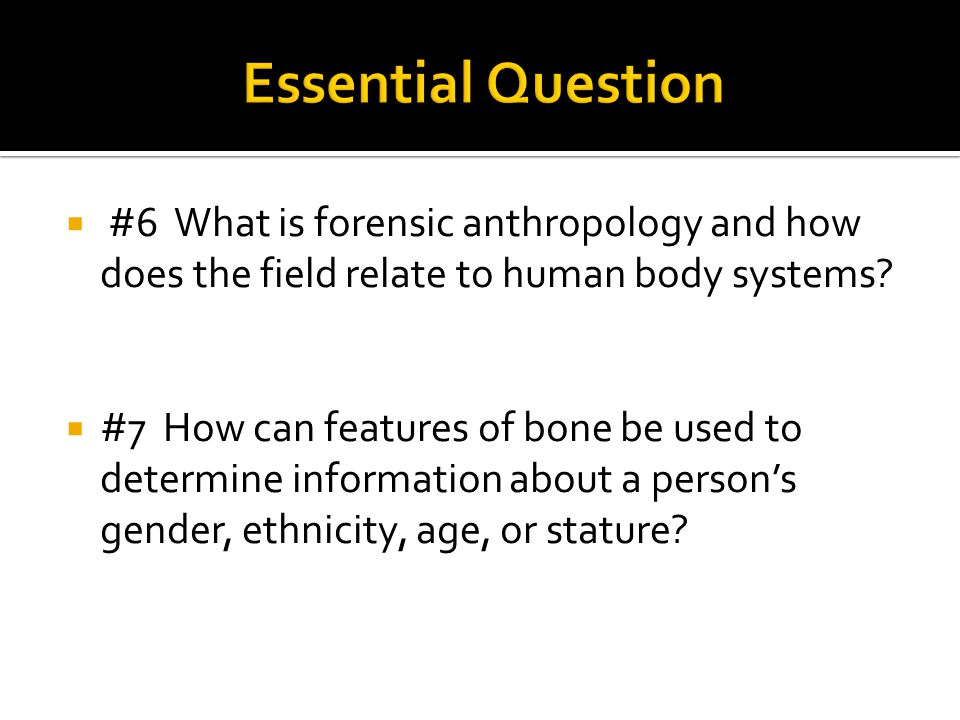 Essential Question #6 What is forensic anthropology and how does the field relate to human body systems