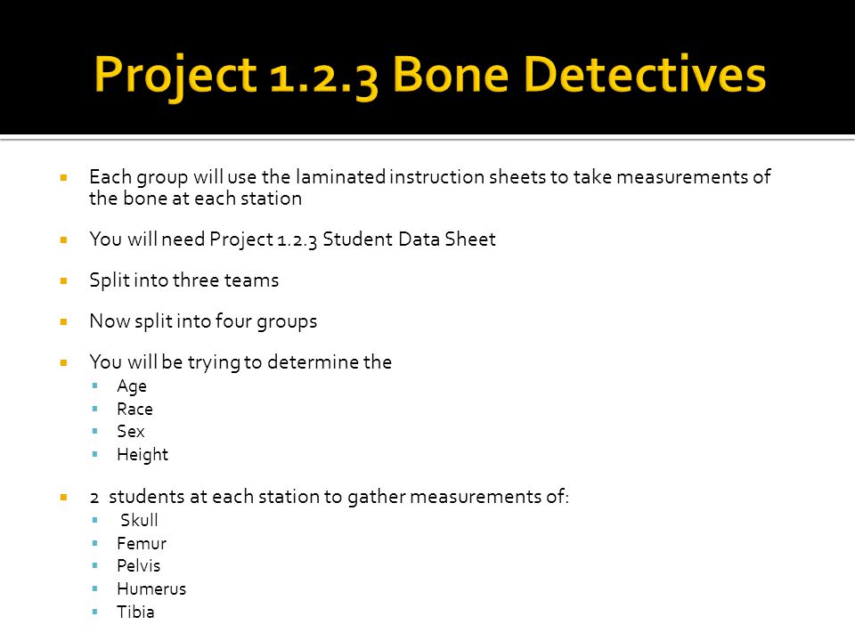 Project 1.2.3 Bone Detectives
