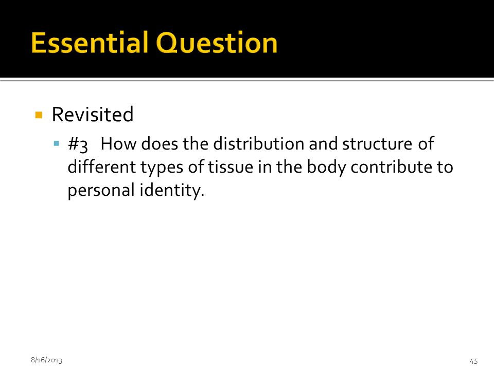 Essential Question Revisited