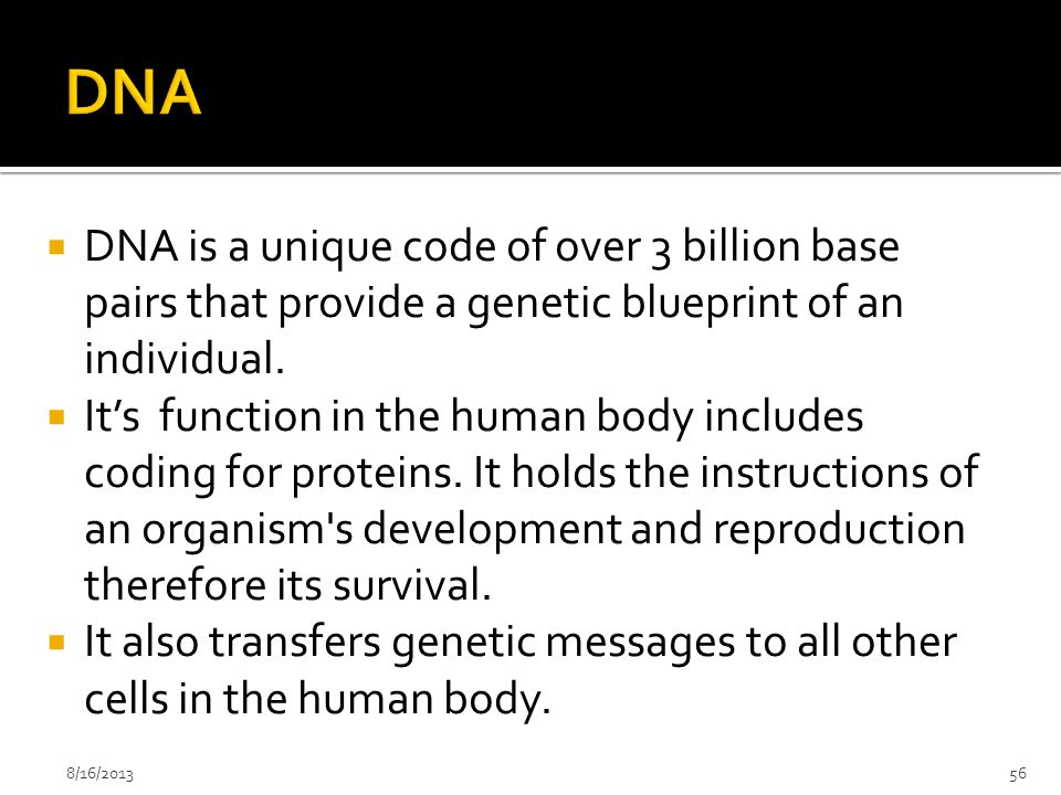 DNA DNA is a unique code of over 3 billion base pairs that provide a genetic blueprint of an individual.