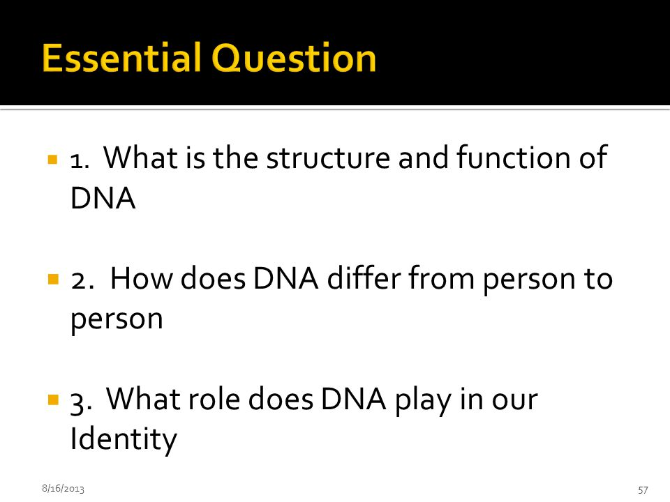 Essential Question 2. How does DNA differ from person to person