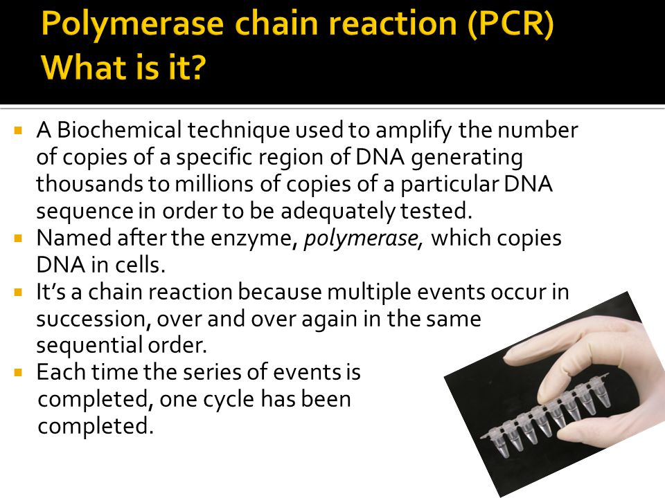 Polymerase chain reaction (PCR) What is it