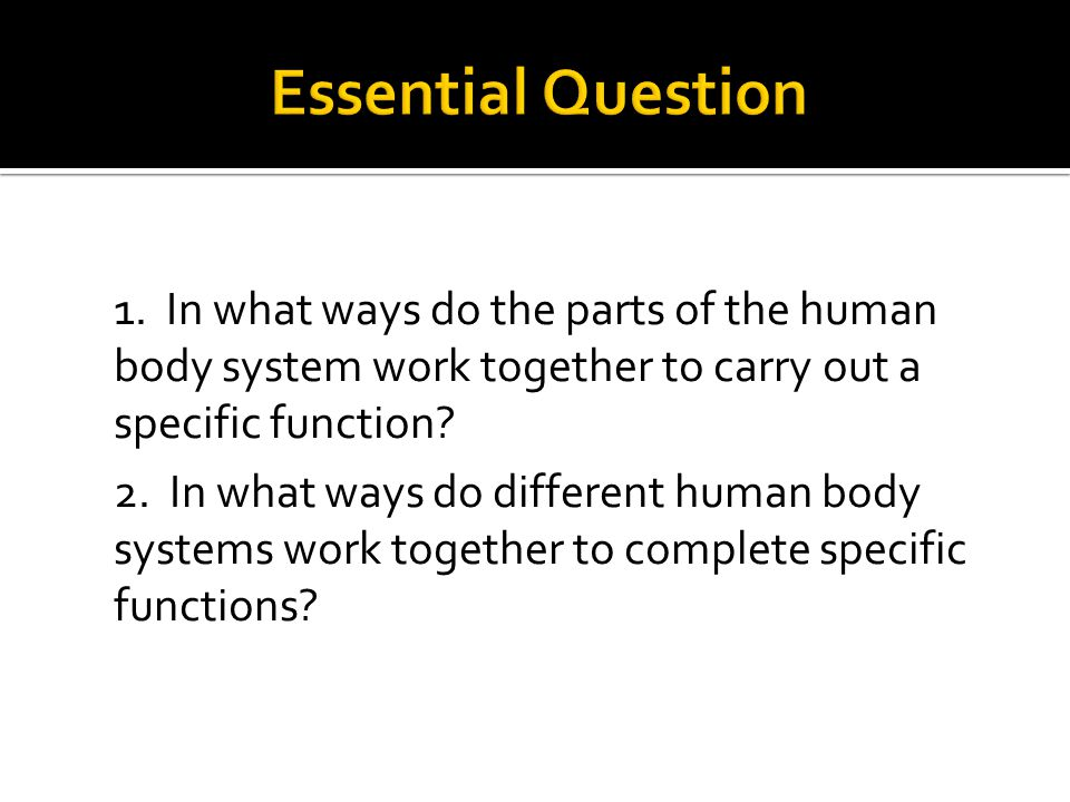 Essential Question 1. In what ways do the parts of the human body system work together to carry out a specific function