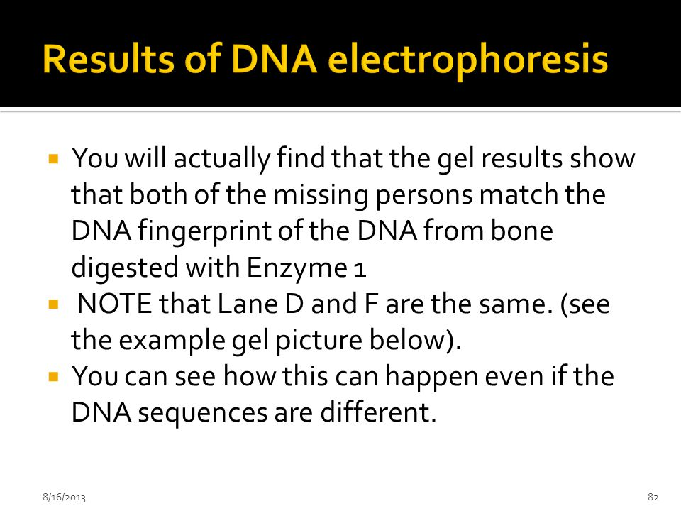 Results of DNA electrophoresis