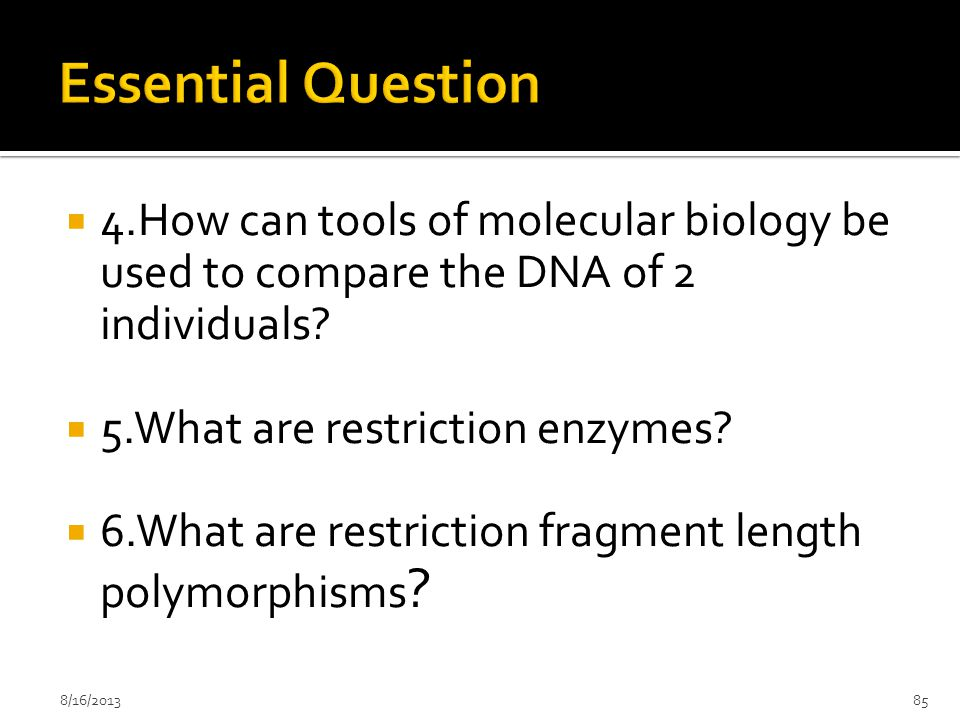 Essential Question 4.How can tools of molecular biology be used to compare the DNA of 2 individuals