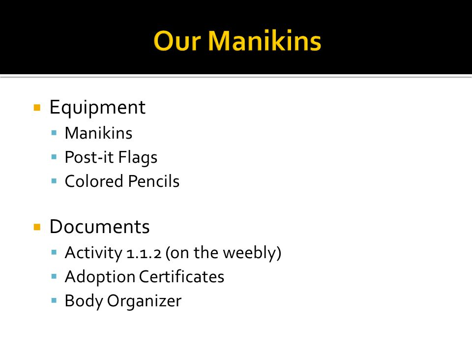 Our Manikins Equipment Documents Manikins Post-it Flags