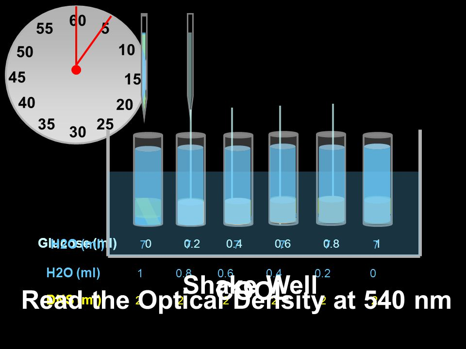 Read the Optical Density at 540 nm
