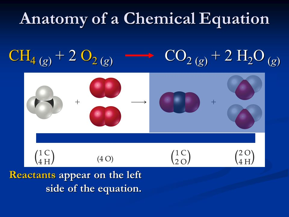 Anatomy of a Chemical Equation
