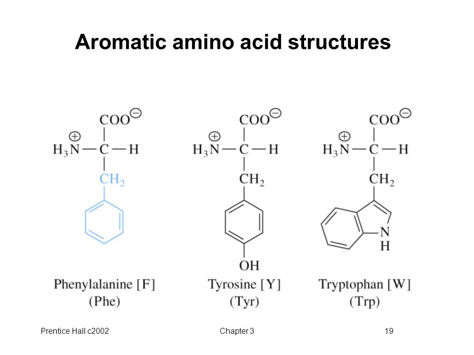 Aromatic amino acid structures