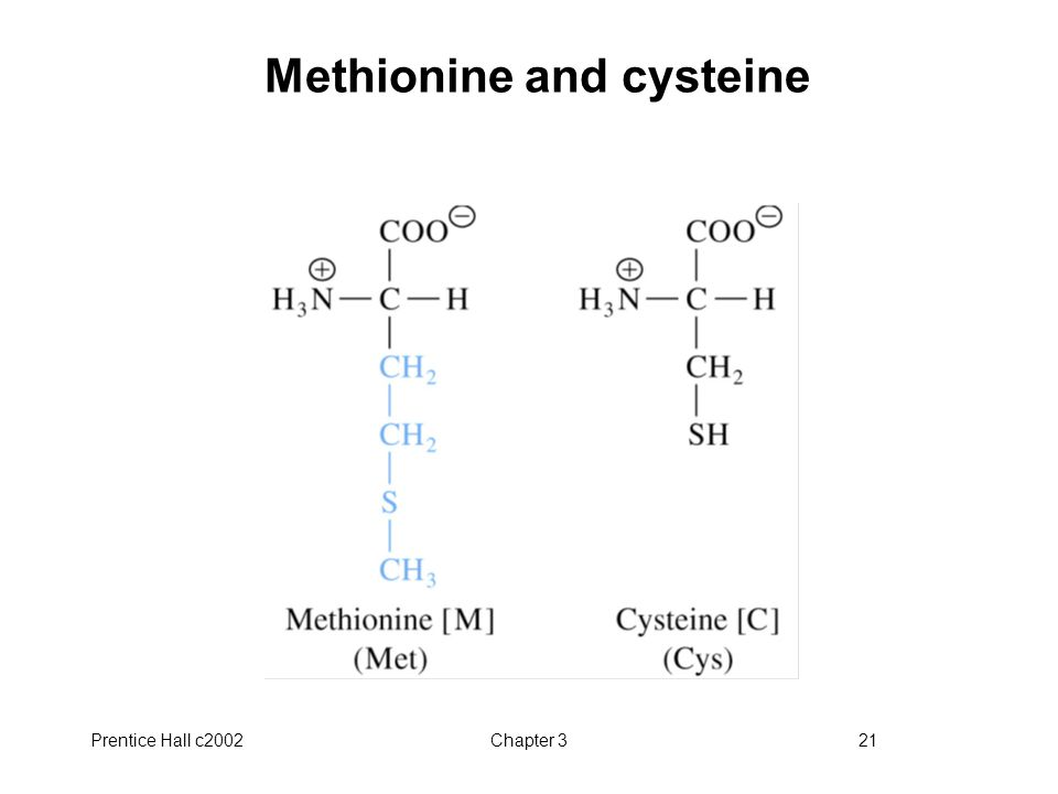 Methionine and cysteine