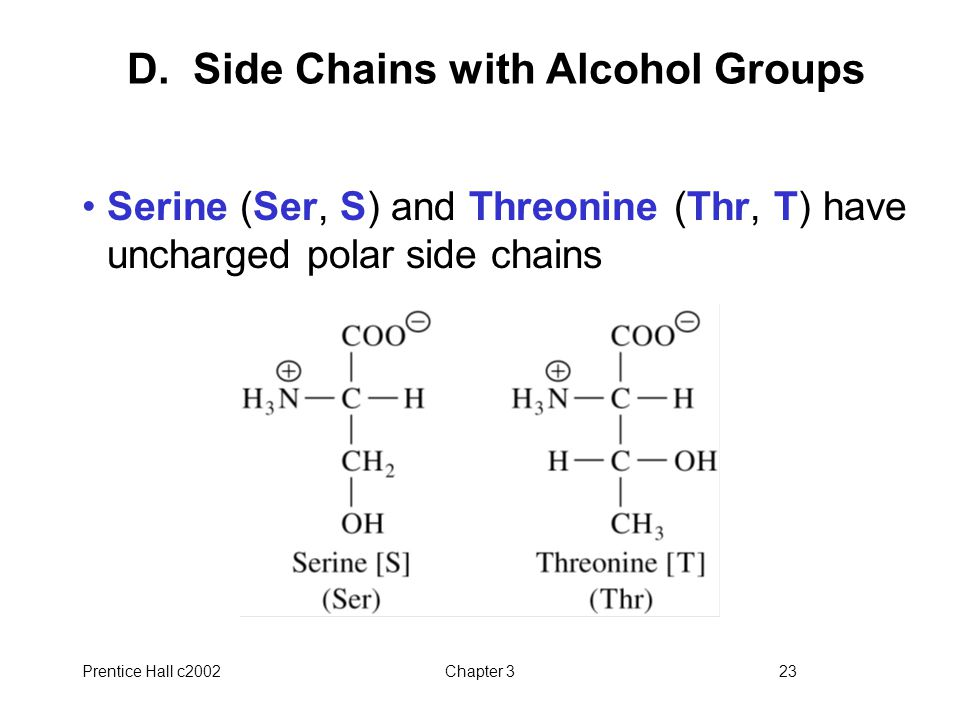 D. Side Chains with Alcohol Groups