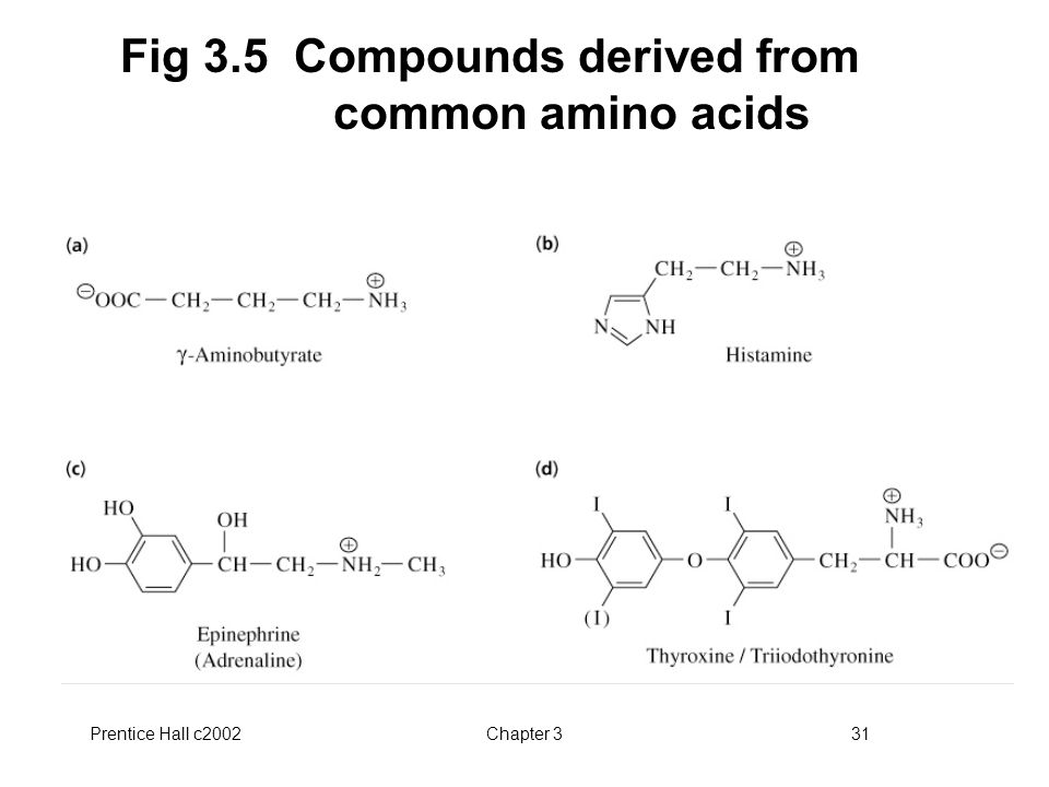 Fig 3.5 Compounds derived from common amino acids
