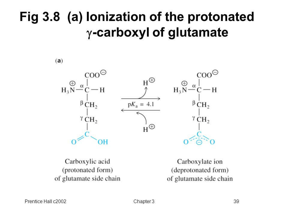 Fig 3.8 (a) Ionization of the protonated g-carboxyl of glutamate