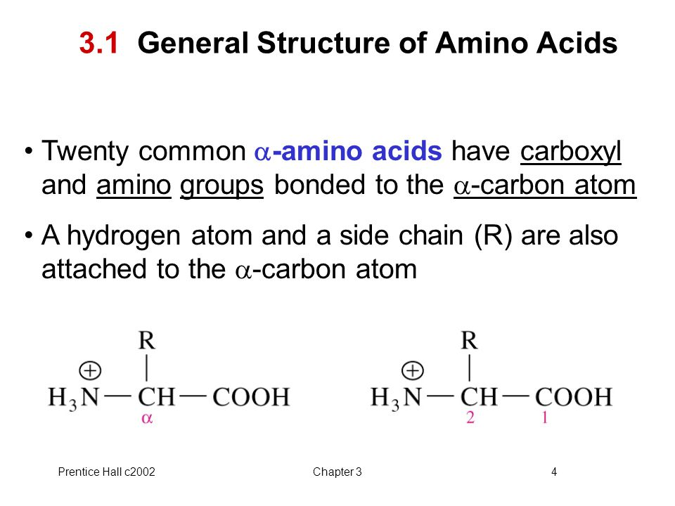 3.1 General Structure of Amino Acids