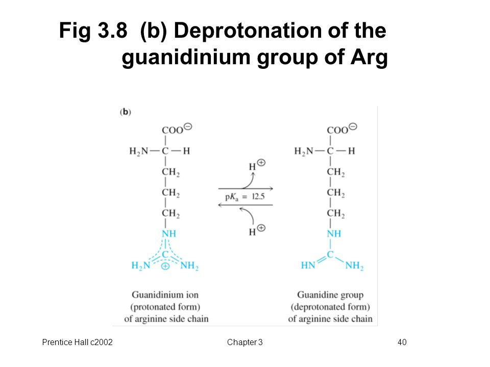 Fig 3.8 (b) Deprotonation of the guanidinium group of Arg
