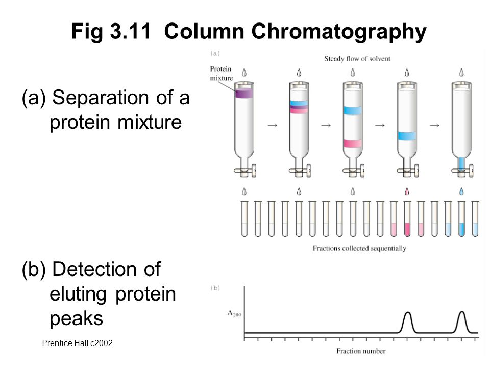 Fig 3.11 Column Chromatography