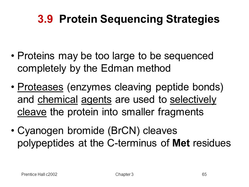 3.9 Protein Sequencing Strategies