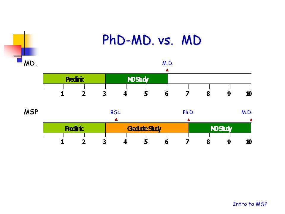 PhD-MD. vs. MD Intro to MSP