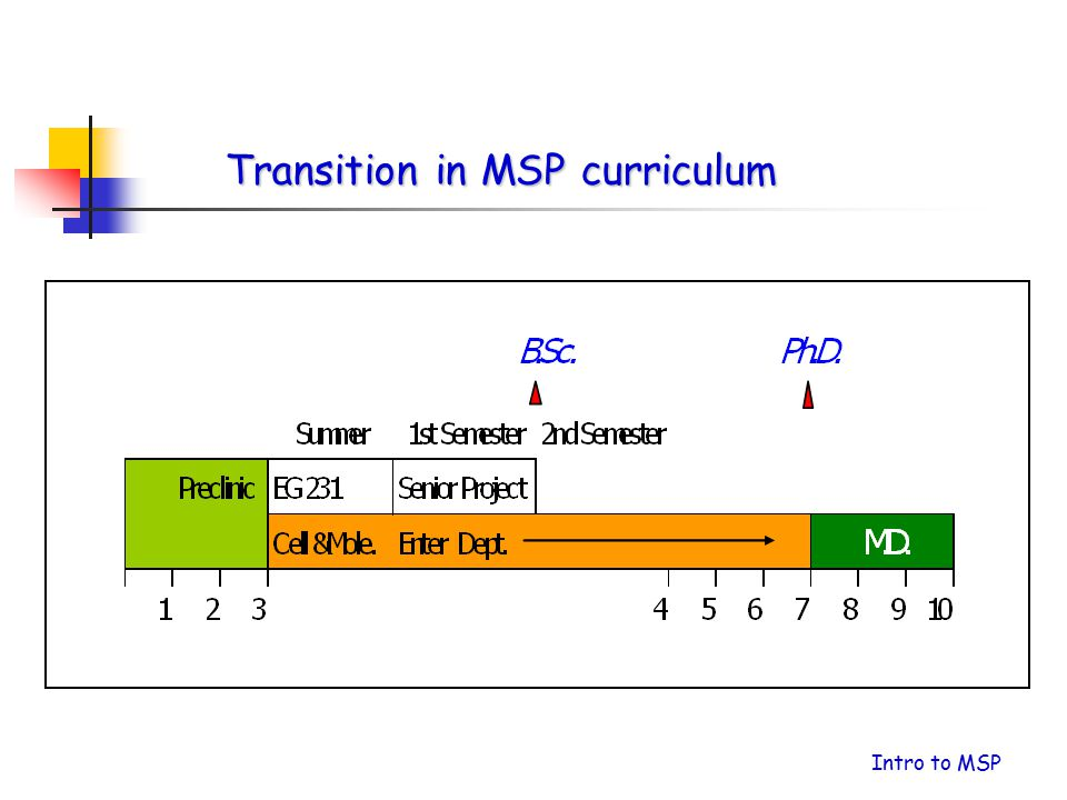 Transition in MSP curriculum