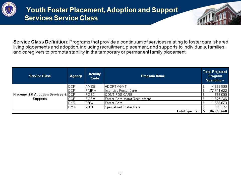 Youth Foster Placement, Adoption and Support Services Service Class