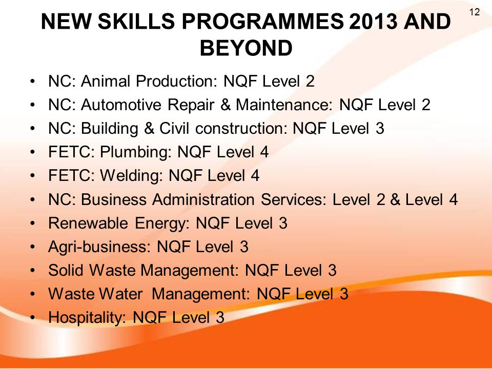 NEW SKILLS PROGRAMMES 2013 AND BEYOND