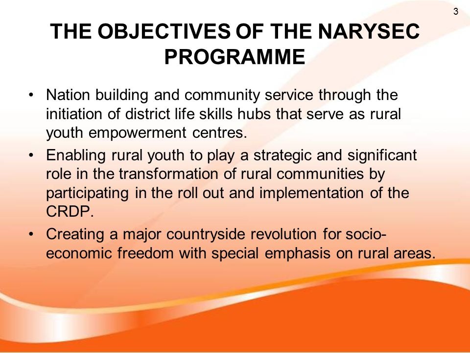 THE OBJECTIVES OF THE NARYSEC PROGRAMME