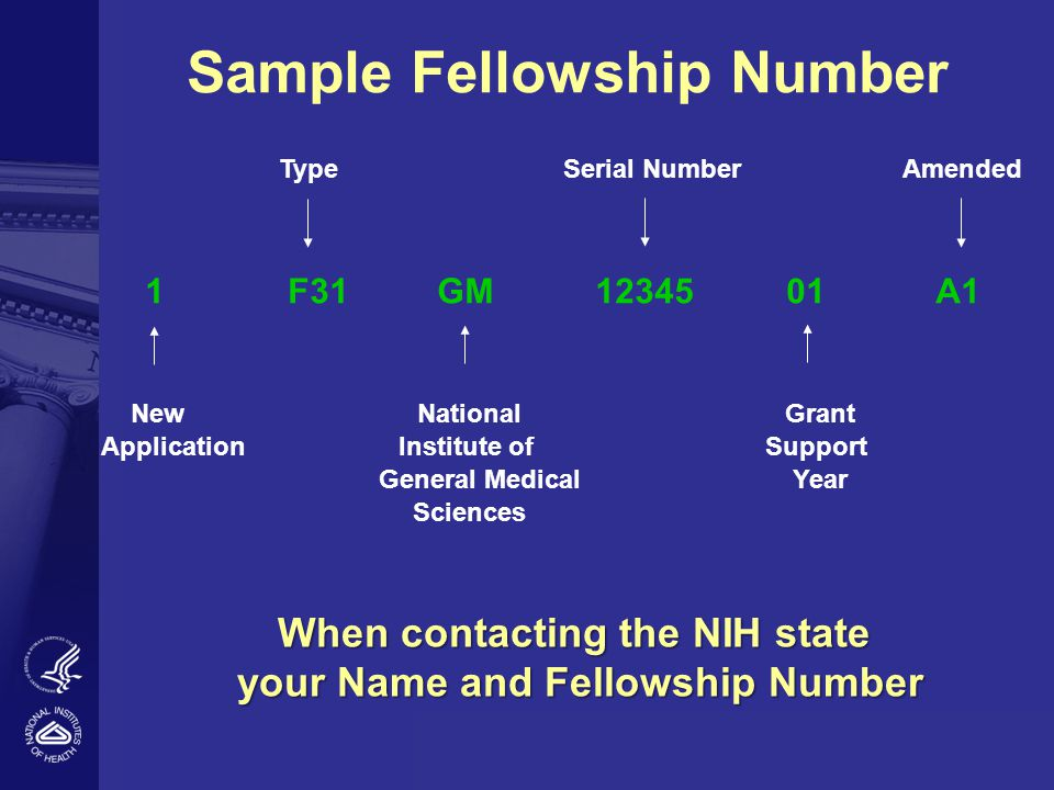 Sample Fellowship Number