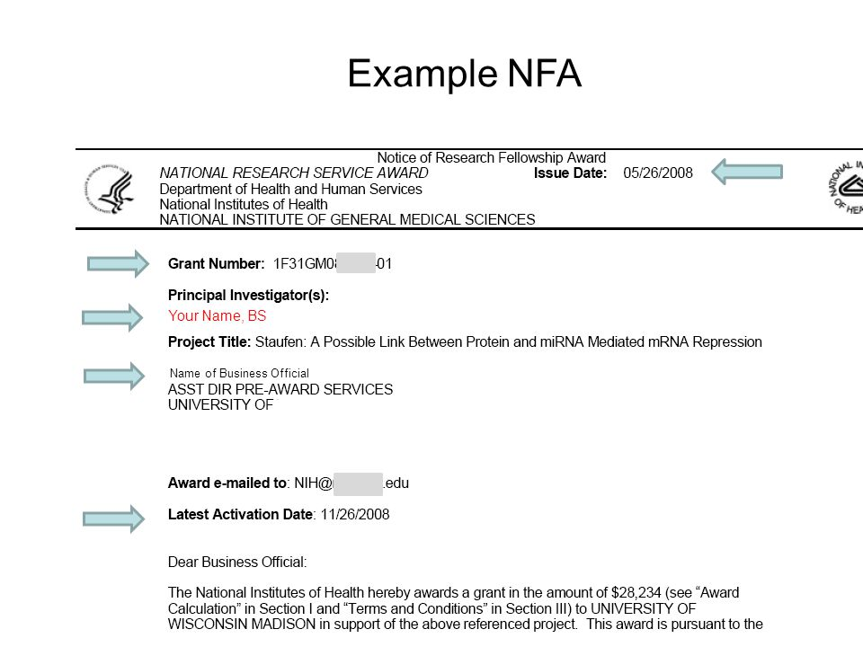 Example NFA Your Name, BS Name of Business Official