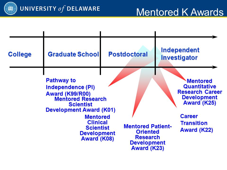 Mentored Awards