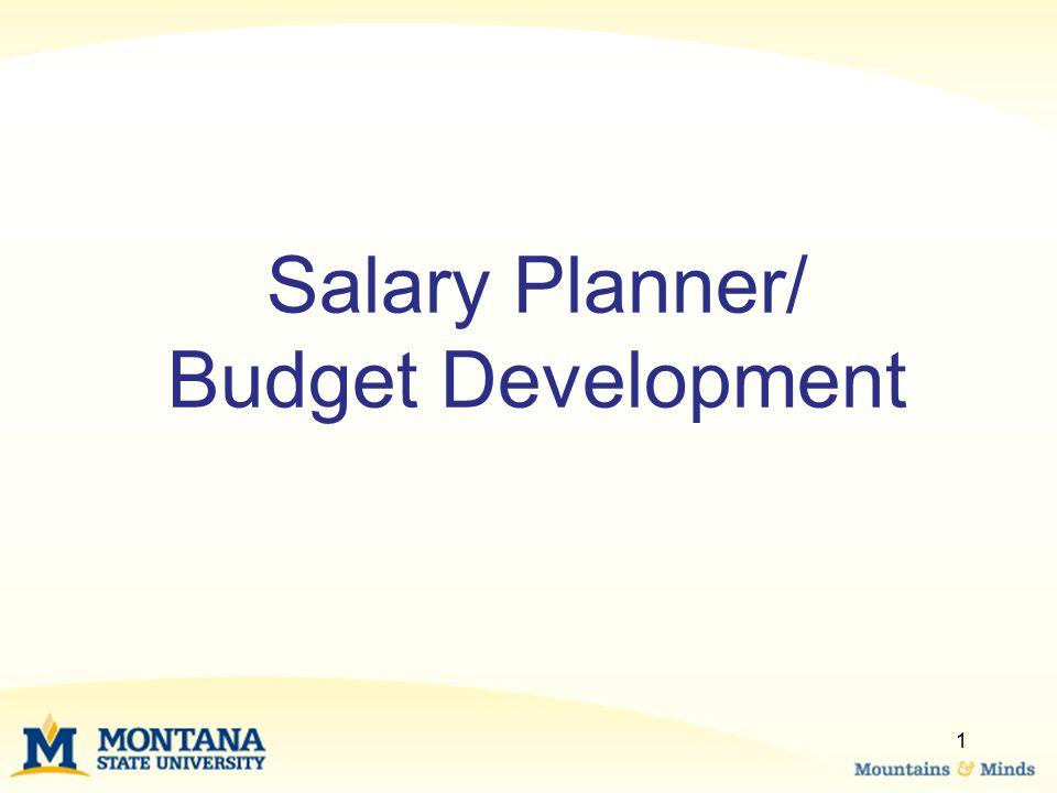 Salary Planner/ Budget Development