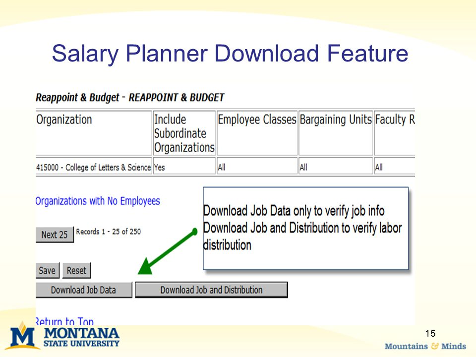 Salary Planner Download Feature
