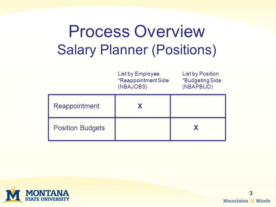 Process Overview Salary Planner (Positions)
