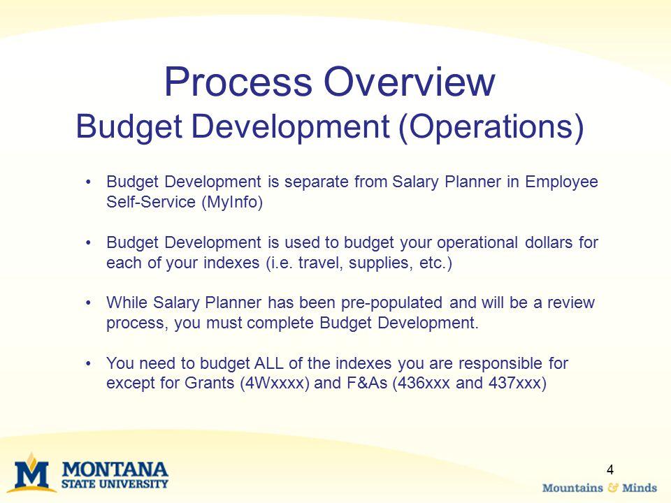 Process Overview Budget Development (Operations)