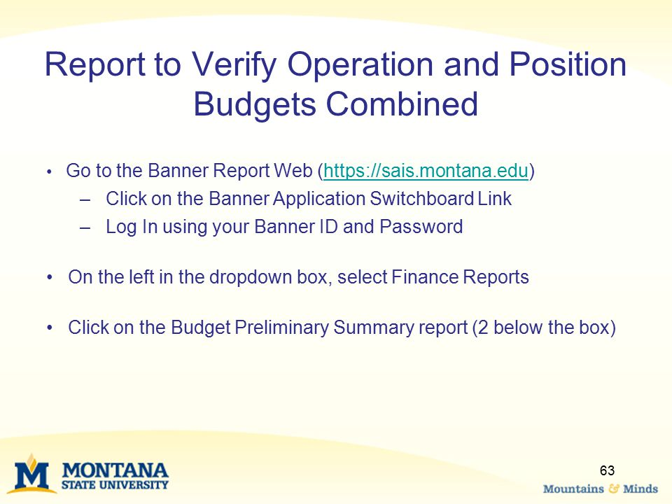 Report to Verify Operation and Position Budgets Combined