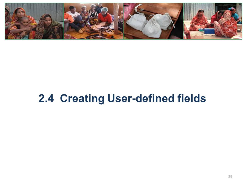 2.4 Creating User-defined fields