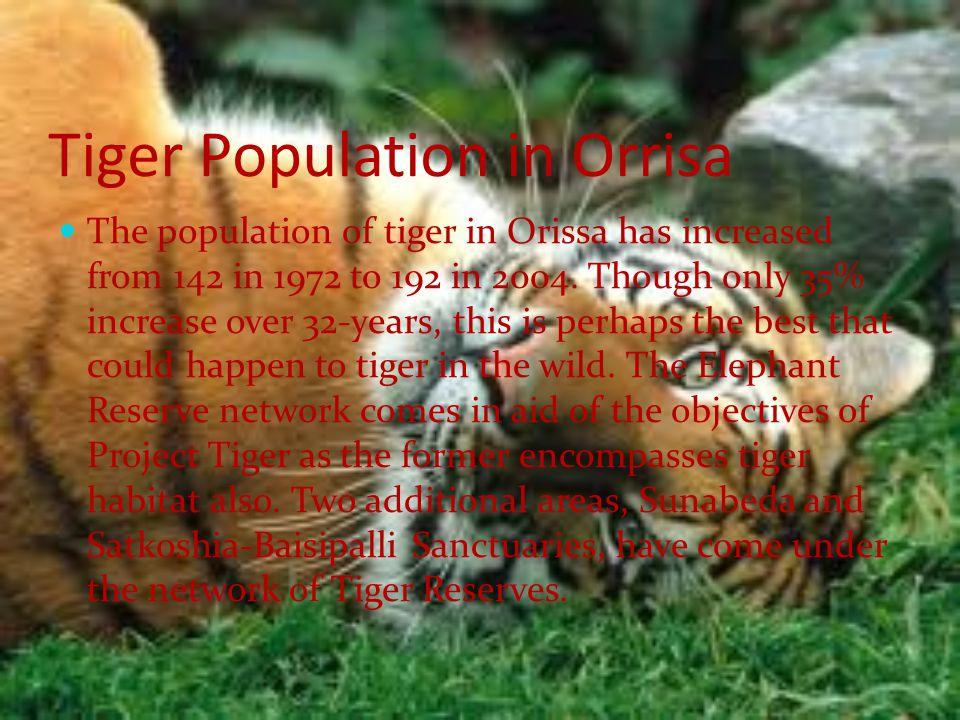 Tiger Population in Orrisa