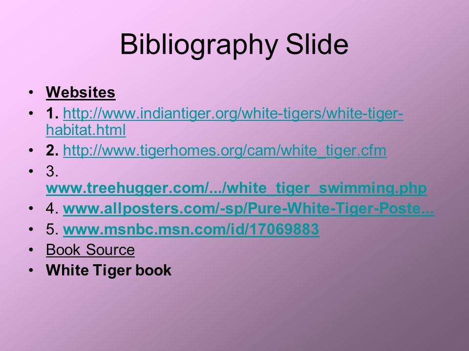 Bibliography Slide Websites