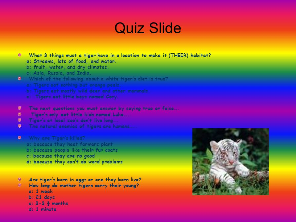 Quiz Slide What 3 things must a tiger have in a location to make it (THEIR) habitat a: Streams, lots of food, and water.