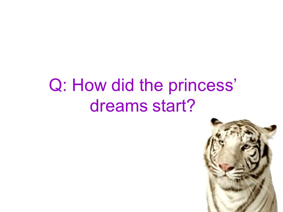 Q: How did the princess' dreams start