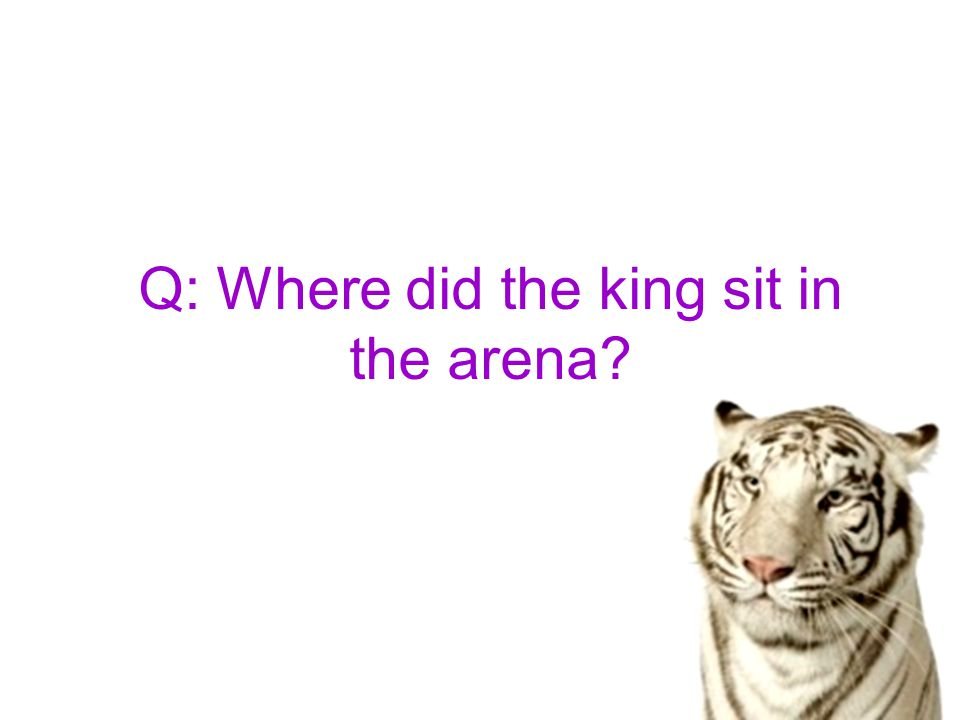 Q: Where did the king sit in the arena