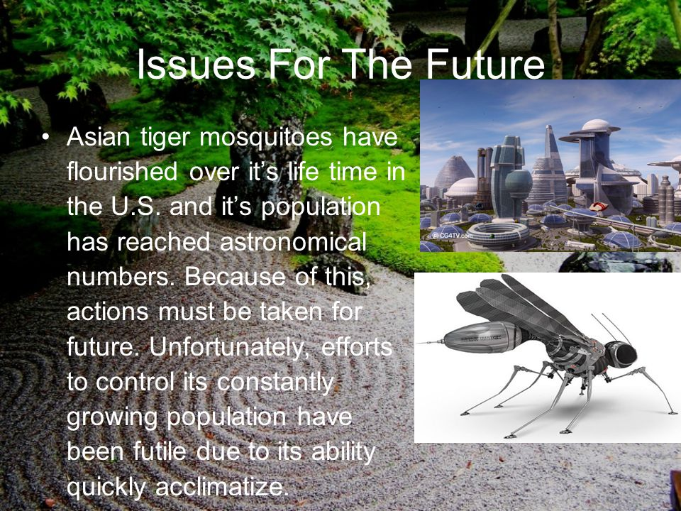 Issues For The Future Asian tiger mosquitoes have