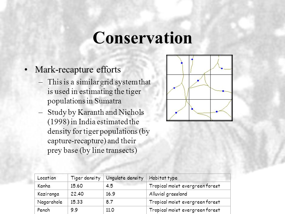 Conservation Mark-recapture efforts