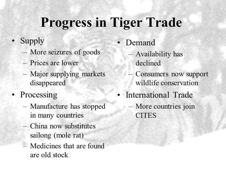 Progress in Tiger Trade