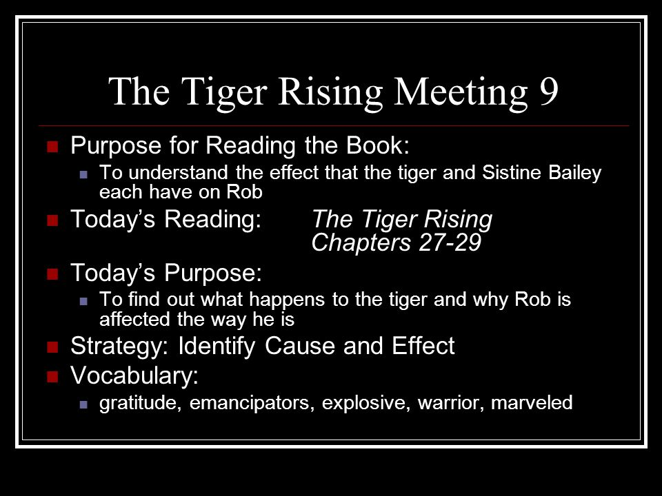 The Tiger Rising Meeting 9