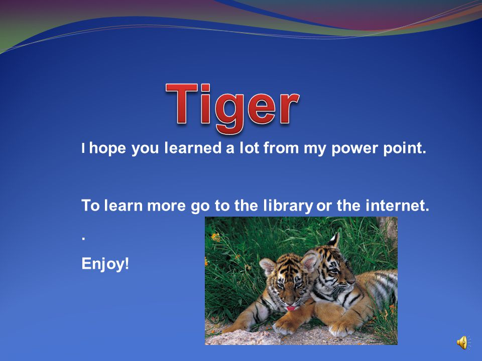 Tiger To learn more go to the library or the internet. . Enjoy!